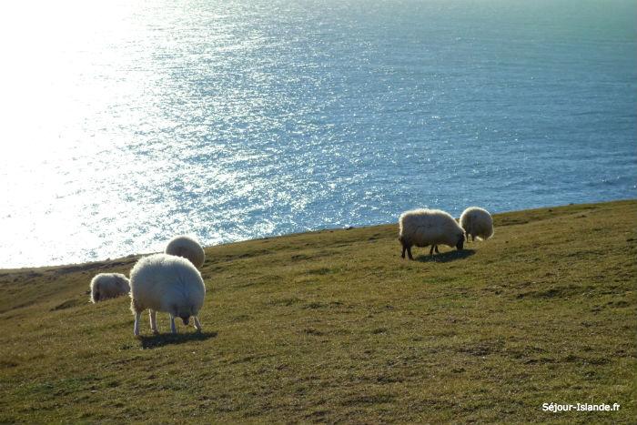 Voyage Islande au mois d'avril